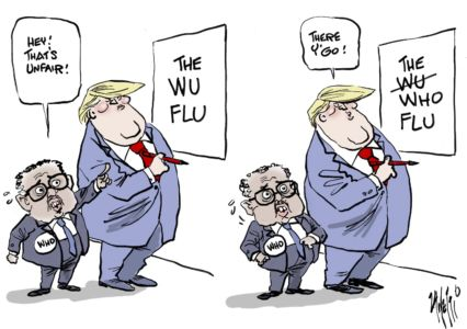 The WHO Flu