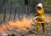 Backburning fires in Australia