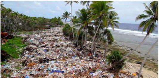 Beach covered in Ocean Plastic