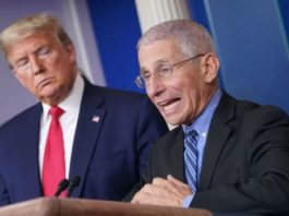 Dr Fauci caused the virus